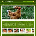养殖场网站模板