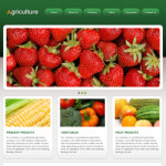农业网站(英文)模板